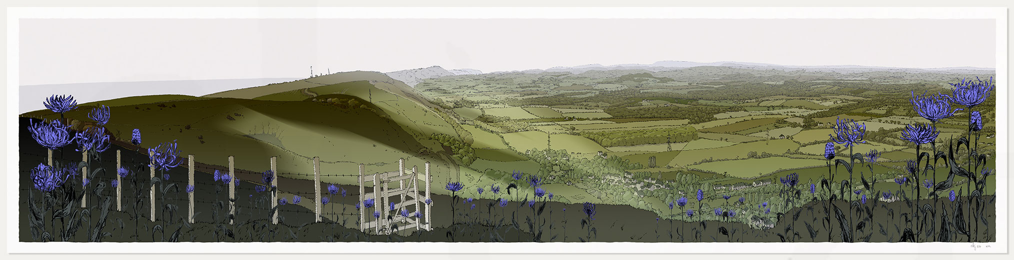 print named Devils Dike Round Headed Rampion, Pride of Sussex by artist alej ez