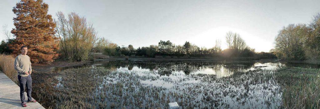 Bosham reflection of trees in water